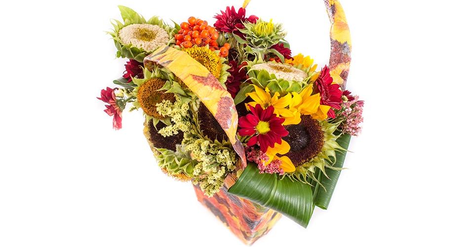 Цветы бузины официальные букеты цветов фото оптовые